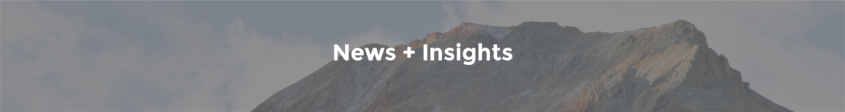 news + insights blog post banner