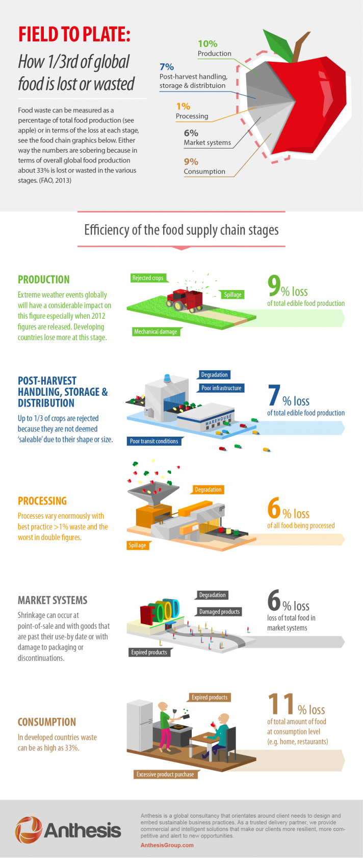 infographic of efficiency of food supply chain stages