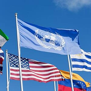 UNITED NATIONS FLAGS SDGs