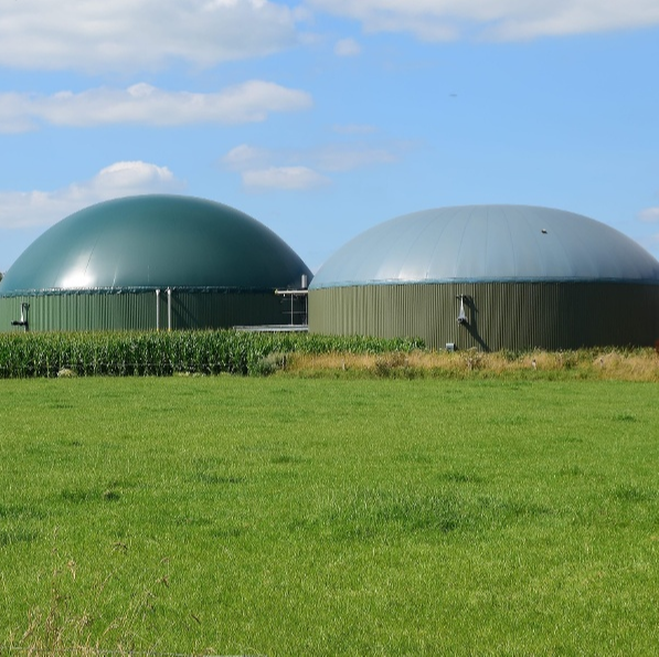 Anaerobic digestion plant 1-1