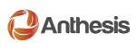 Anthesis Consulting Group