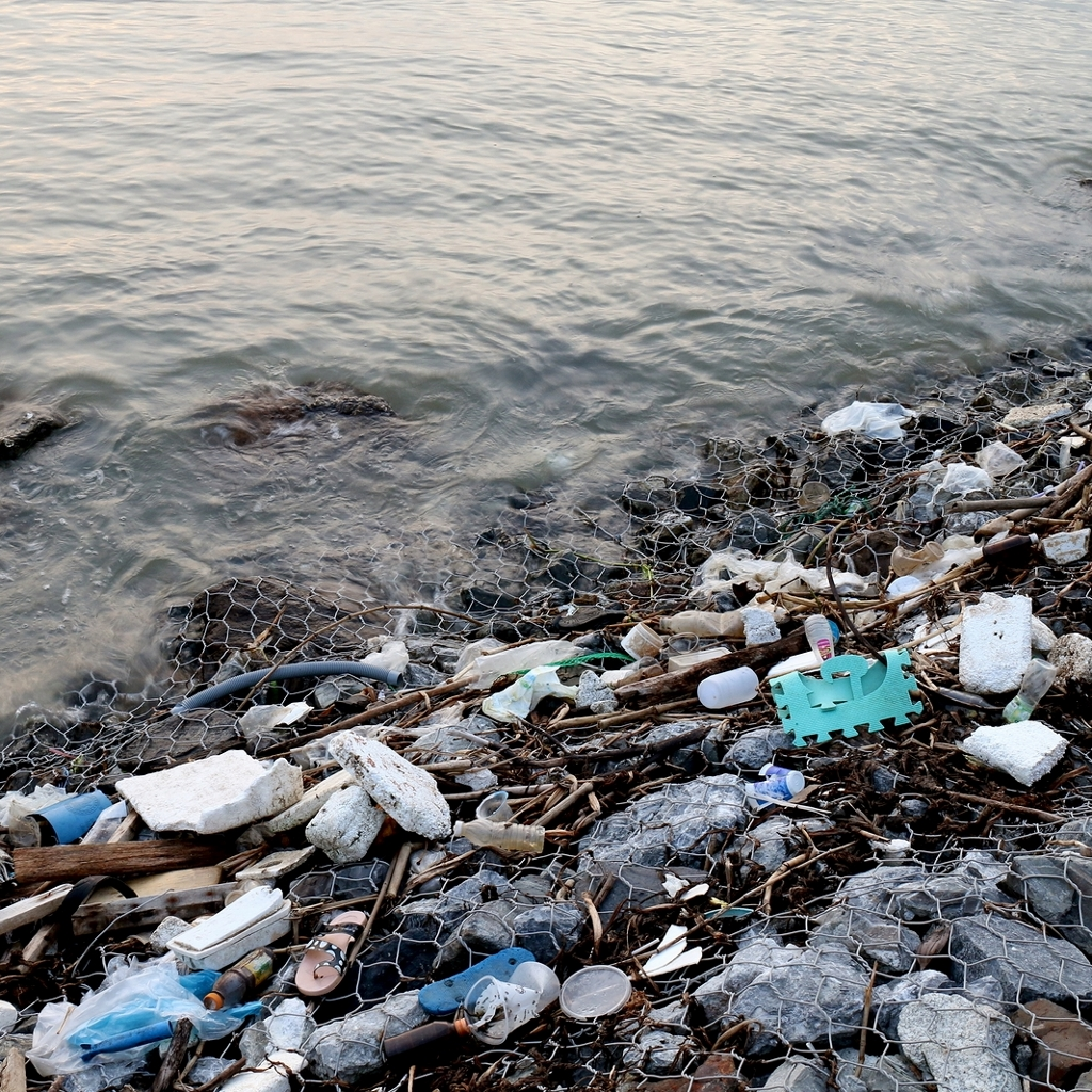 River pollution and waste