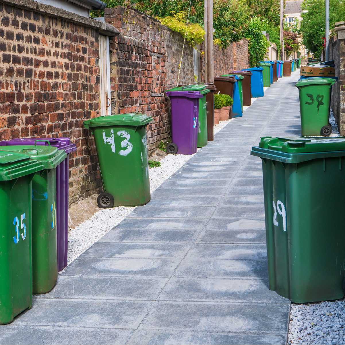 wheelie bins in alleyway
